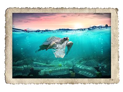 Schildkröte im Meer aus Plastik