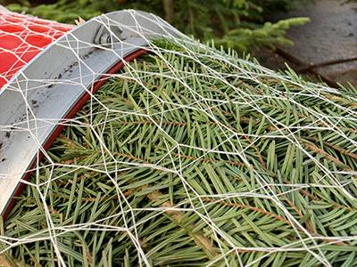 CompoPac-Netz-Trommel-Baumnetz